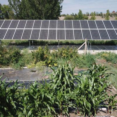 Wild Rose Emu Ranch Solar Electric System